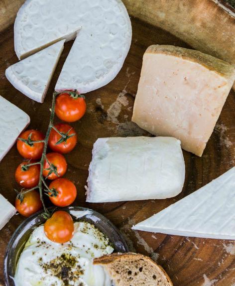 פלטה עם גבינות